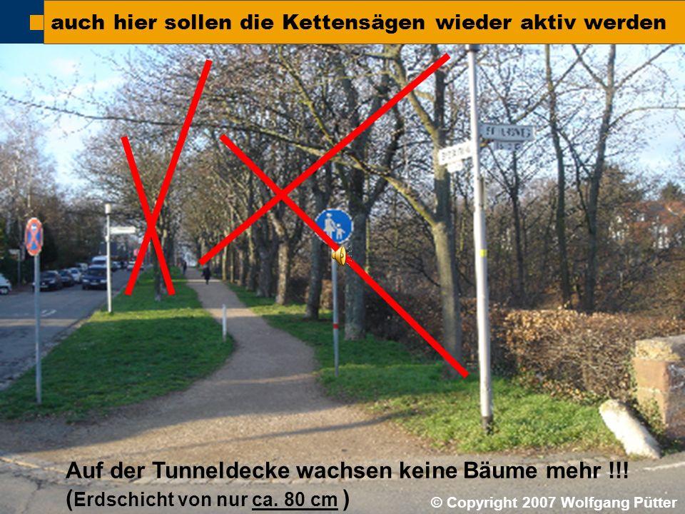  BI ONO ( Wolfgang Pütter) auch hier sollen die Kettensägen wieder aktiv werden Auf der Tunneldecke wachsen keine Bäume mehr !!! ( Erdschicht von nur