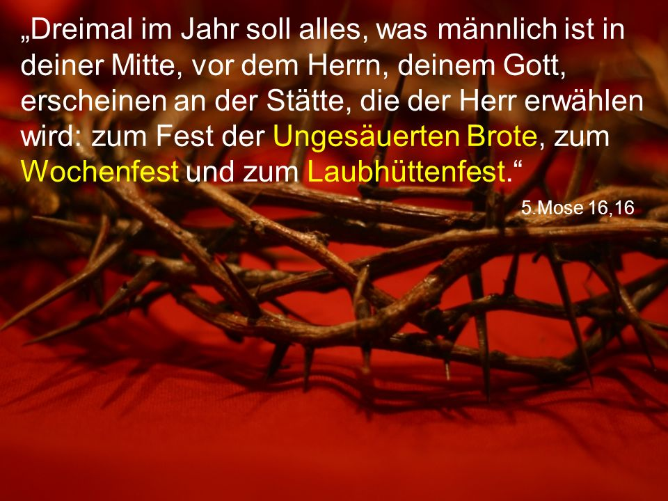 """5.Mose 16,16 """"Dreimal im Jahr soll alles, was männlich ist in deiner Mitte, vor dem Herrn, deinem Gott, erscheinen an der Stätte, die der Herr erwählen wird: zum Fest der Ungesäuerten Brote, zum Wochenfest und zum Laubhüttenfest."""