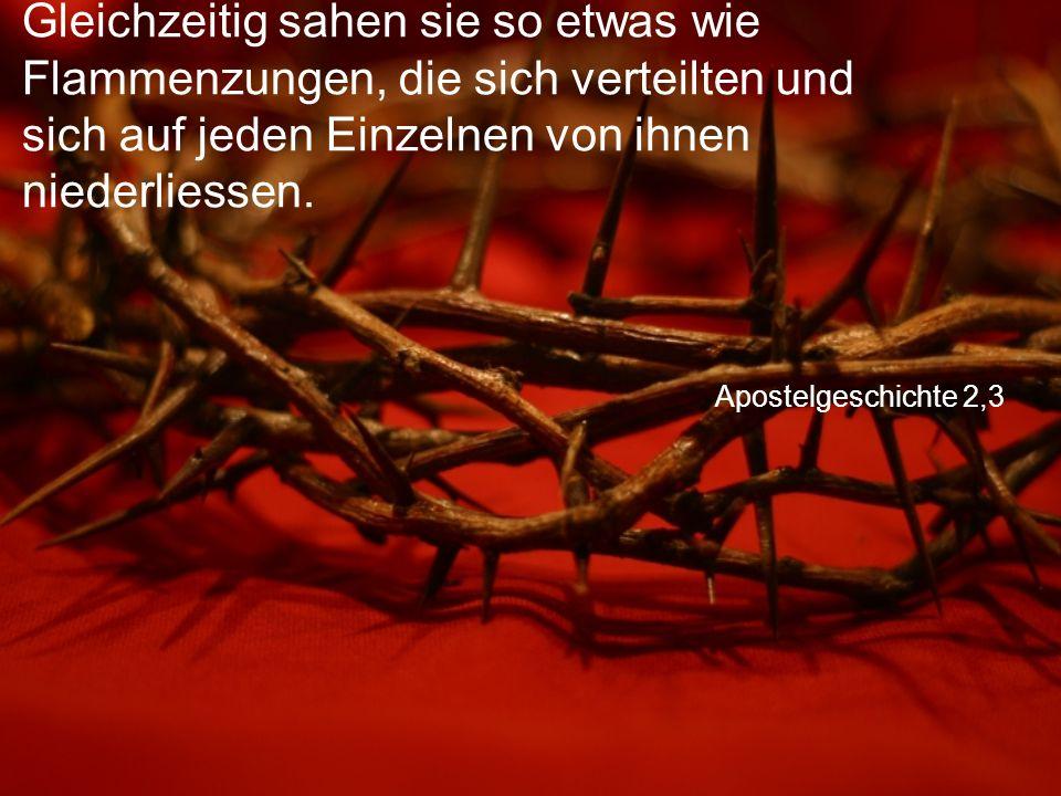 Apostelgeschichte 2,3 Gleichzeitig sahen sie so etwas wie Flammenzungen, die sich verteilten und sich auf jeden Einzelnen von ihnen niederliessen.