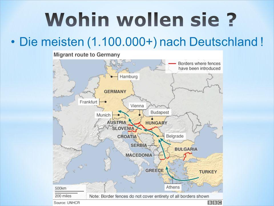 Die meisten (1.100.000+) nach Deutschland !