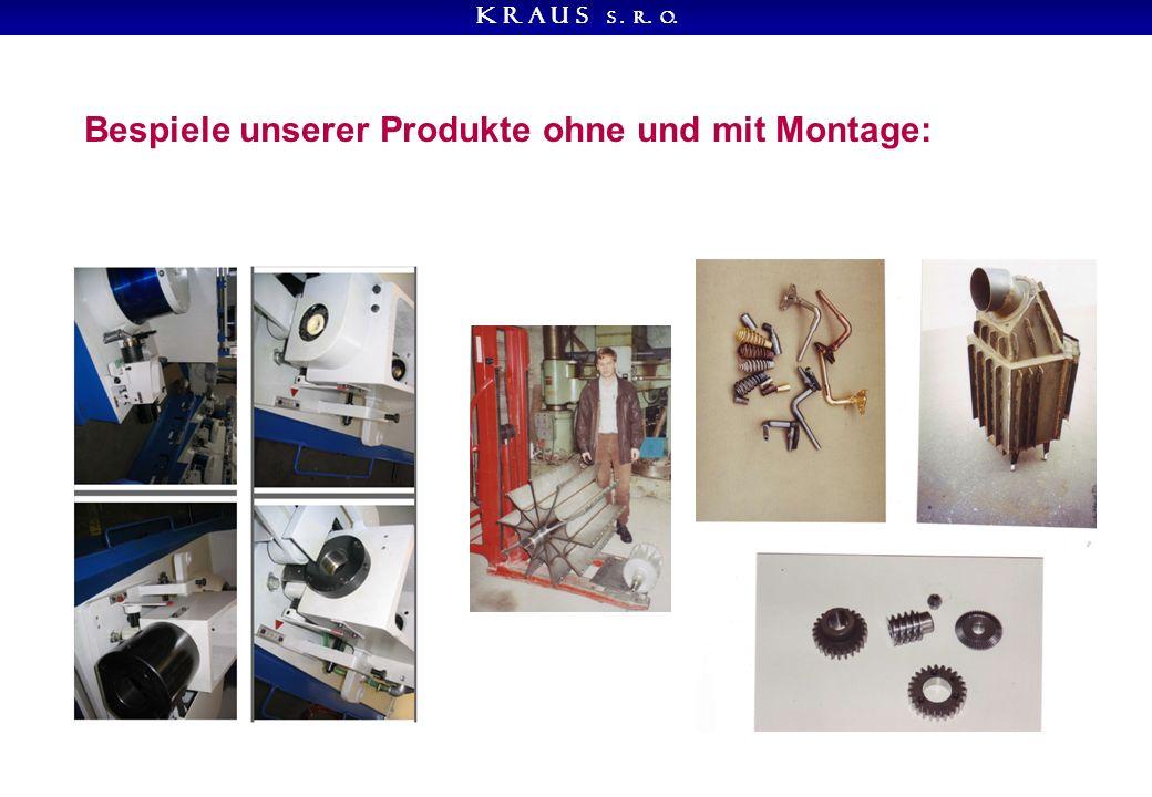 K R A U S s. r. o. Bespiele unserer Produkte ohne und mit Montage: