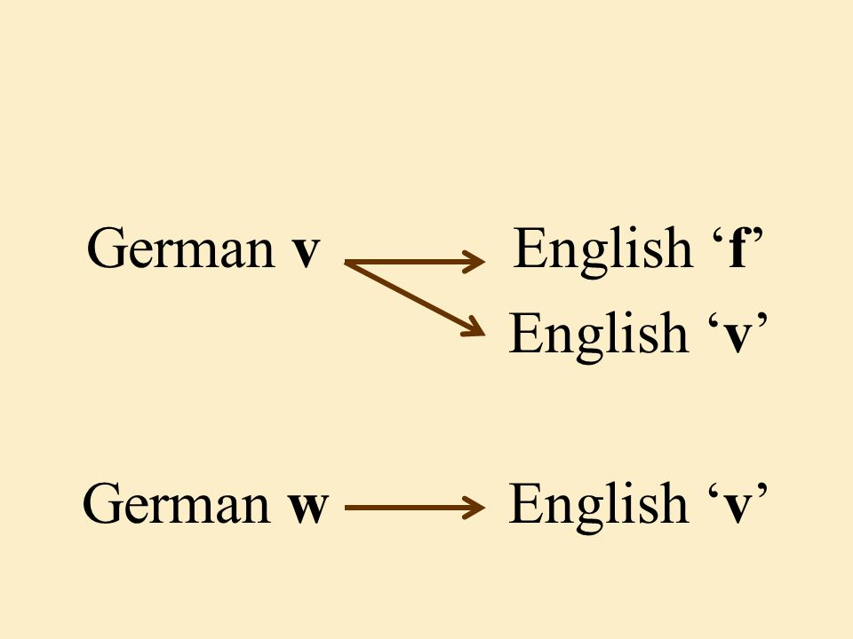 German vEnglish 'f' English 'v' German wEnglish 'v'