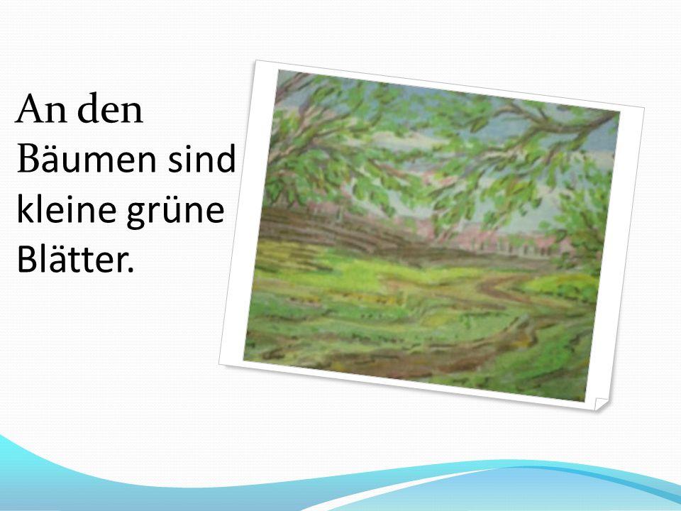 An den Bäumen sind kleine grüne Blätter.
