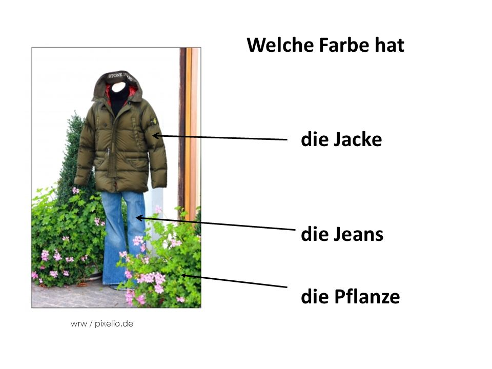 Welche Farbe hat die Jacke die Jeans die Pflanze wrw / pixelio.de