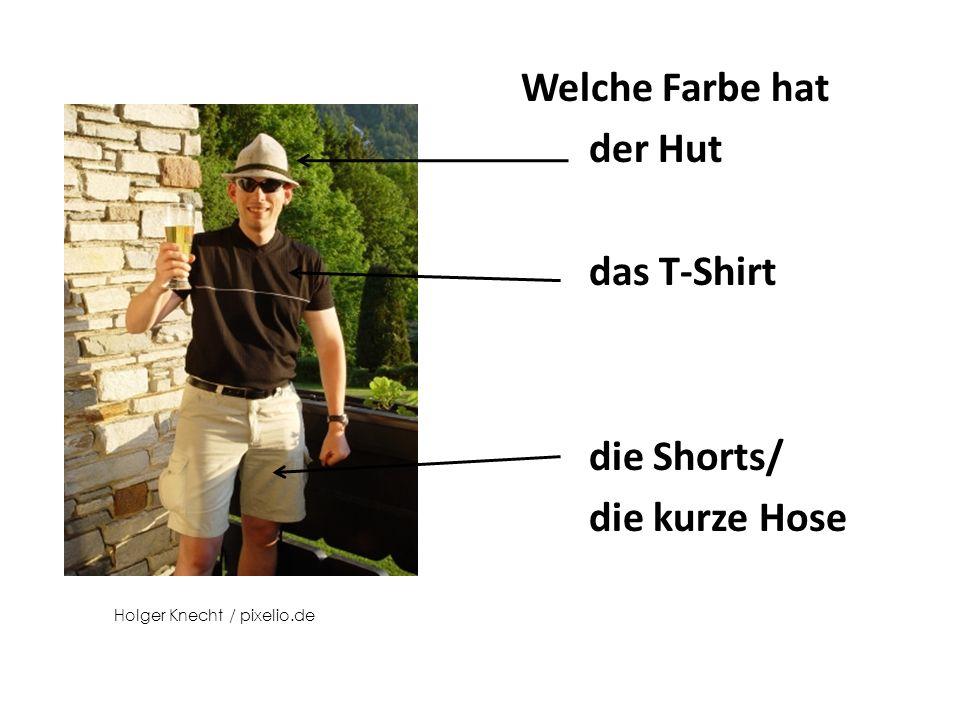 Welche Farbe hat die Fliege die Hose Welche Farbe haben die Socken? Stihl024 / pixelio.de