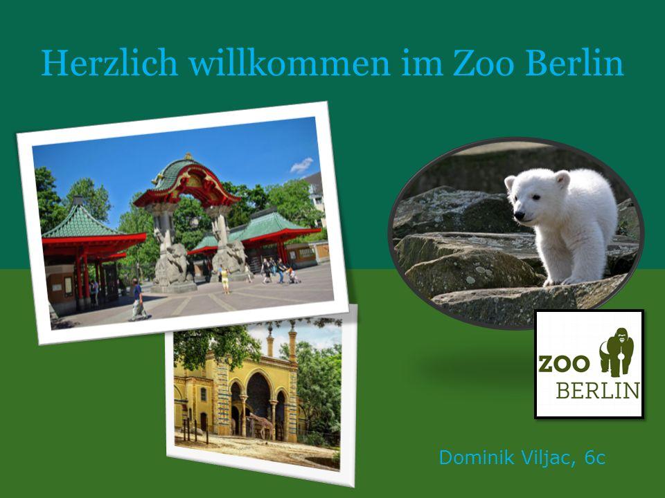 Herzlich willkommen im Zoo Berlin Dominik Viljac, 6c