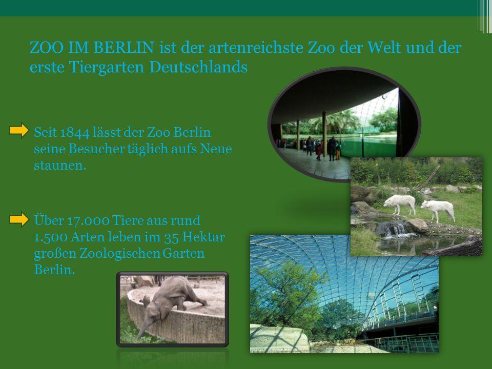 ZOO IM BERLIN ist der artenreichste Zoo der Welt und der erste Tiergarten Deutschlands Seit 1844 lässt der Zoo Berlin seine Besucher täglich aufs Neue staunen.