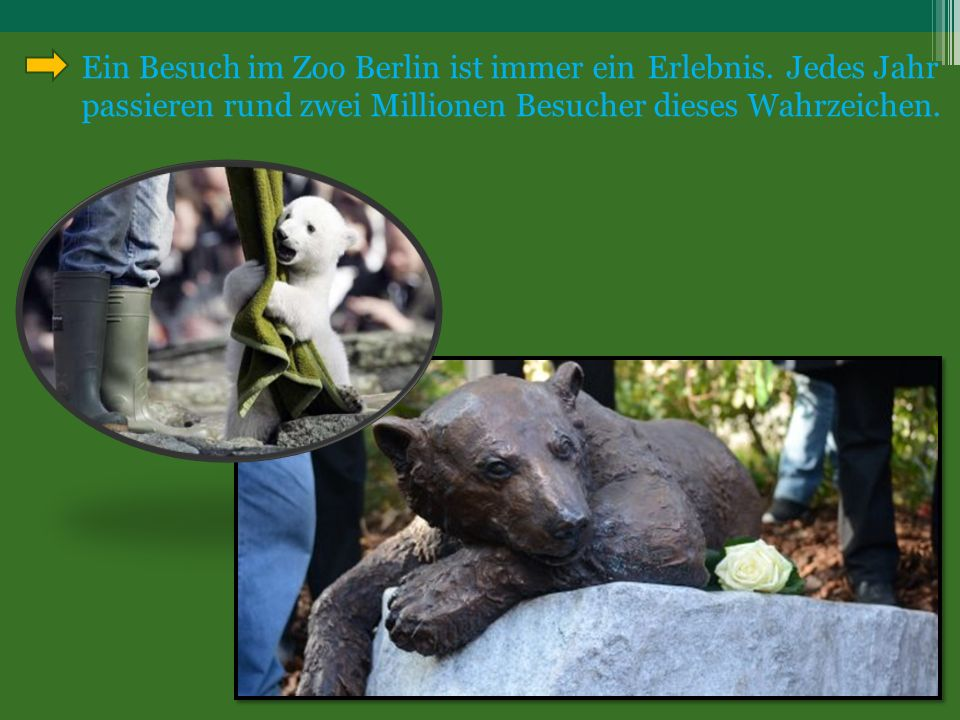Ein Besuch im Zoo Berlin ist immer ein Erlebnis.
