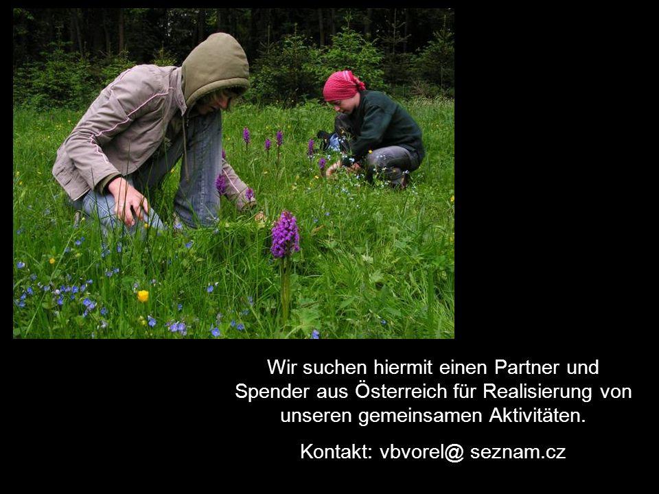 Wir suchen hiermit einen Partner und Spender aus Österreich für Realisierung von unseren gemeinsamen Aktivitäten. Kontakt: vbvorel@ seznam.cz