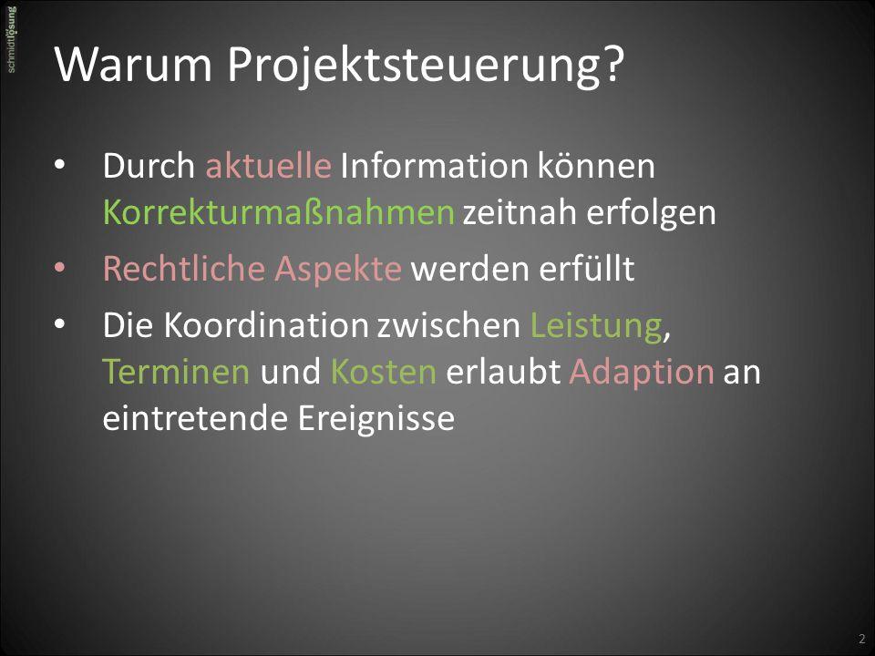 Warum Projektsteuerung.