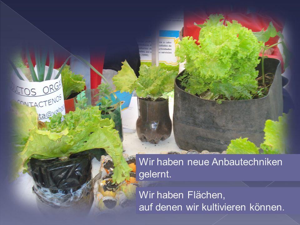 Wir haben neue Anbautechniken gelernt. Wir haben Flächen, auf denen wir kultivieren können.