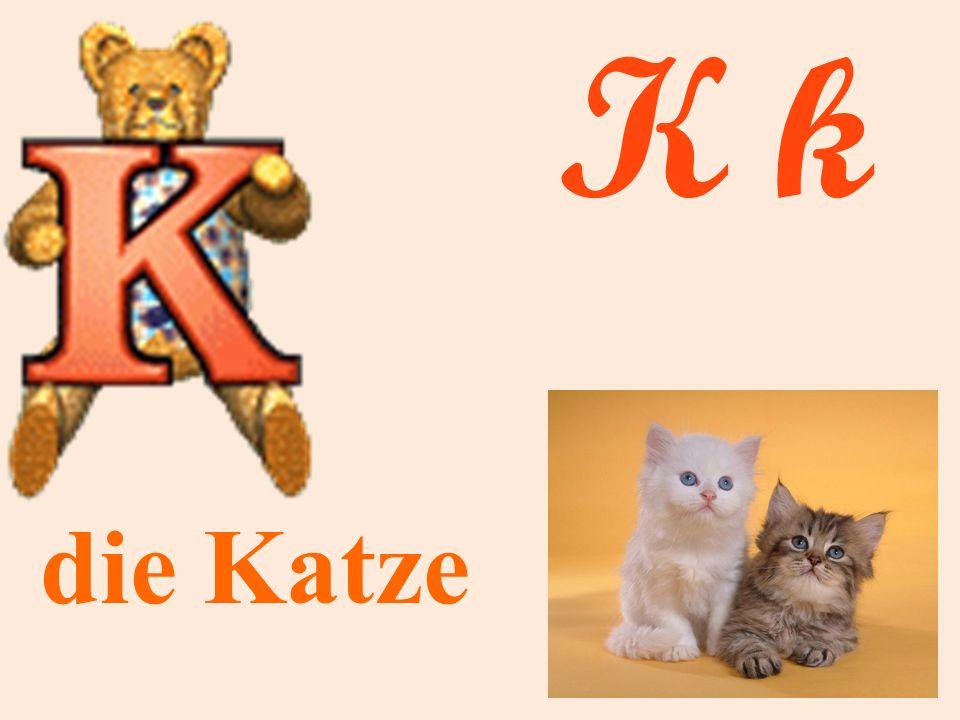 K k die Katze