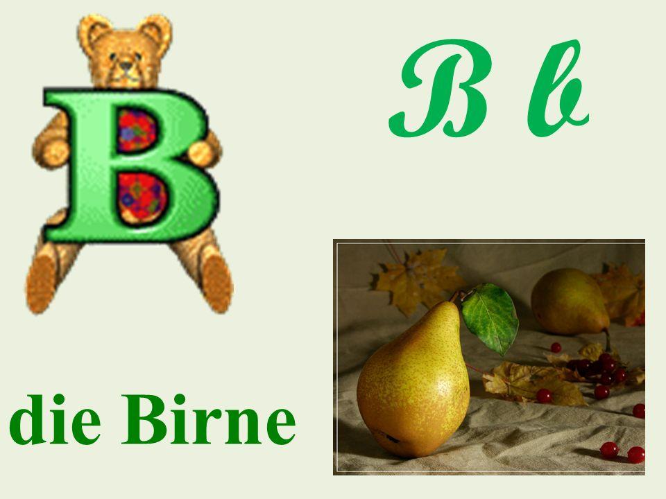 B b die Birne