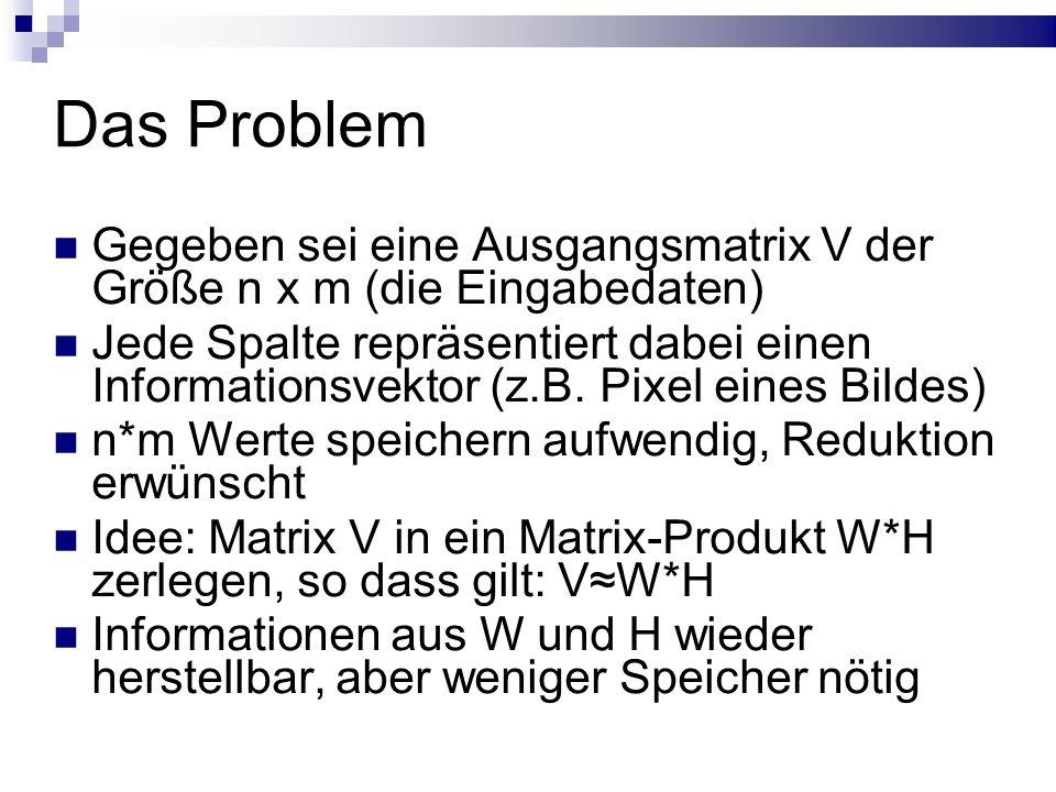Das Problem Gegeben sei eine Ausgangsmatrix V der Größe n x m (die Eingabedaten) Jede Spalte repräsentiert dabei einen Informationsvektor (z.B.