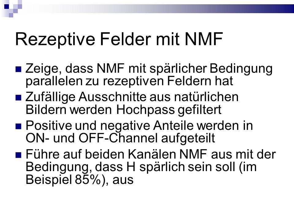 Rezeptive Felder mit NMF Zeige, dass NMF mit spärlicher Bedingung parallelen zu rezeptiven Feldern hat Zufällige Ausschnitte aus natürlichen Bildern werden Hochpass gefiltert Positive und negative Anteile werden in ON- und OFF-Channel aufgeteilt Führe auf beiden Kanälen NMF aus mit der Bedingung, dass H spärlich sein soll (im Beispiel 85%), aus
