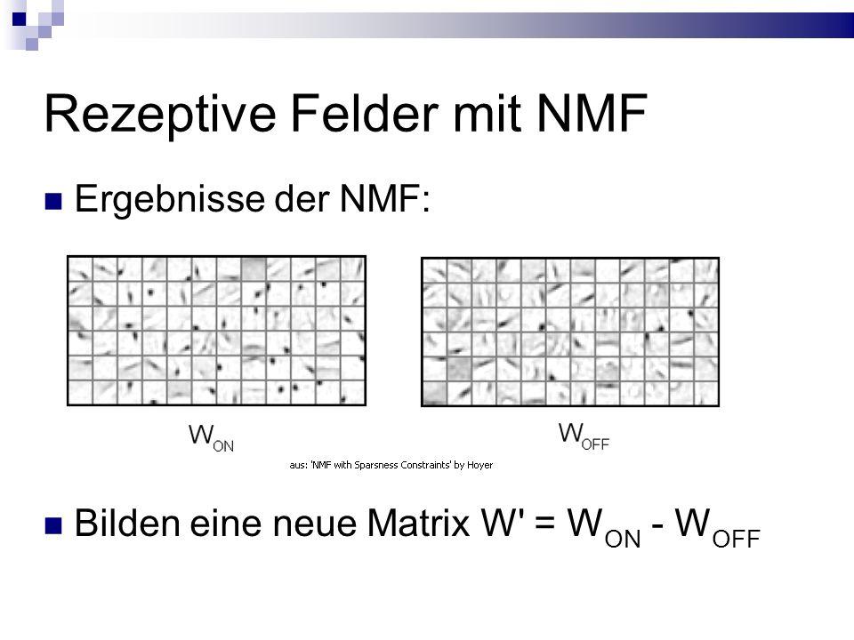 Rezeptive Felder mit NMF Ergebnisse der NMF: Bilden eine neue Matrix W = W ON - W OFF