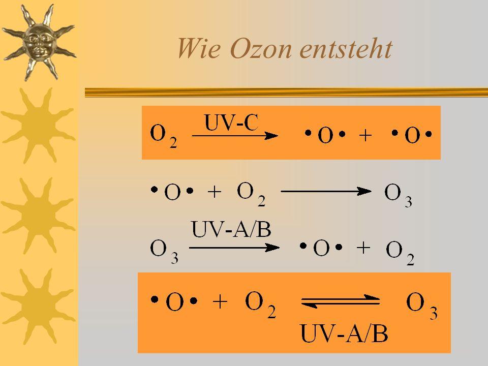 Gegenseitige Regulation UV-Einstrahlung steigt UV-Einstrahlung sinkt Ozonkonzentration steigt Ozonkonzentration sinkt