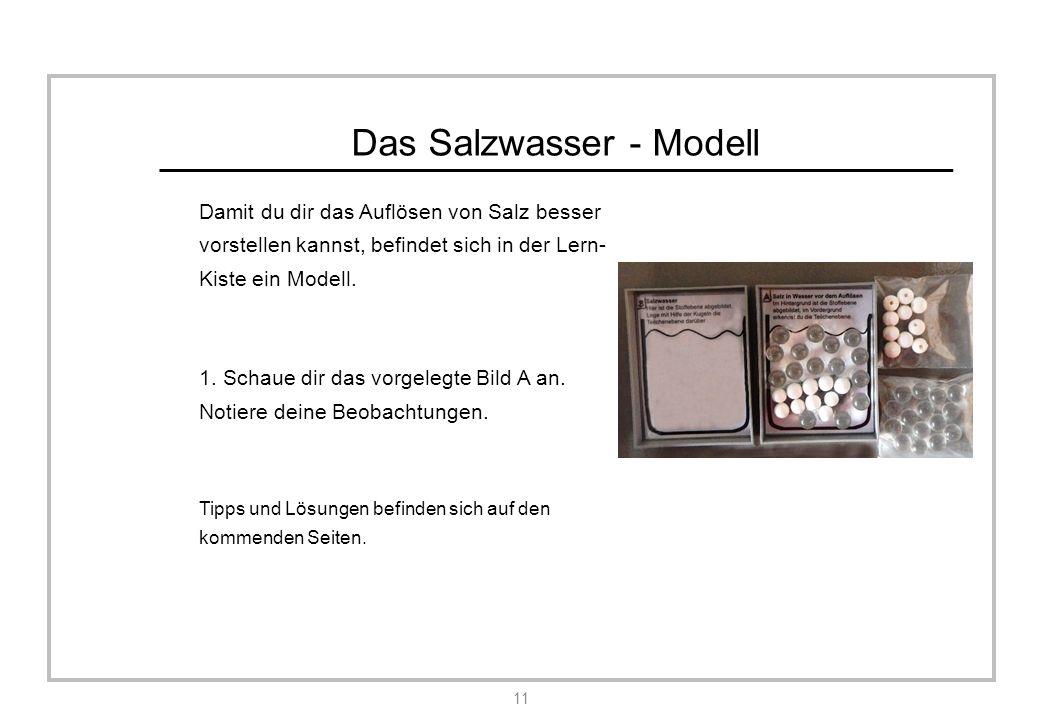 Das Salzwasser - Modell Damit du dir das Auflösen von Salz besser vorstellen kannst, befindet sich in der Lern- Kiste ein Modell.
