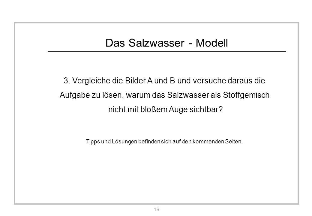 Das Salzwasser - Modell 3.