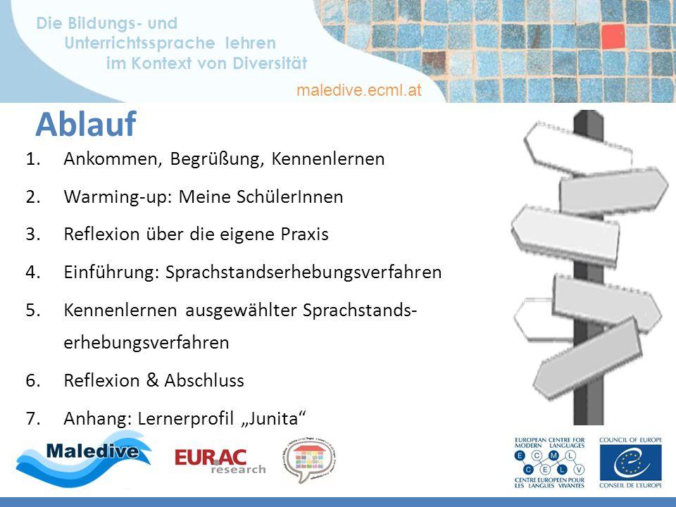 Die Bildungs- und Unterrichtssprache lehren im Kontext von Diversität maledive.ecml.at 4b) Kategorisierung der Erhebungsverfahren Literatur BAMBF (2005): 154 – 164; Kany/Schöler (2010): 115/ Grafik: Antje Aulbert