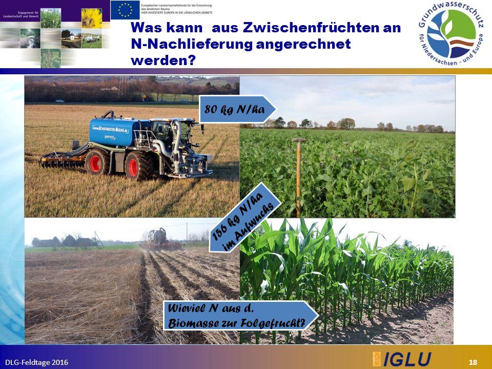 DLG-Feldtage 2016 Was kann aus Zwischenfrüchten an N-Nachlieferung angerechnet werden.