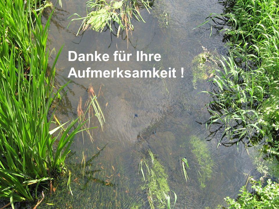 Anlaufberatung GEK Nuthe 19.6.08 in Potsdam LUA RW5 Jutta Kallmann Landesumweltamt Brandenburg, Regionalabteilung West Danke für Ihre Aufmerksamkeit !
