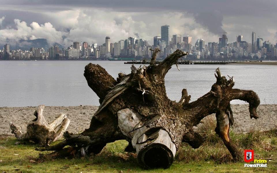 Feminismus, Arbeitskampf und Prohibition waren in Vancouver wichtige gesellschaftliche Themen in der ersten Hälfte des 20.