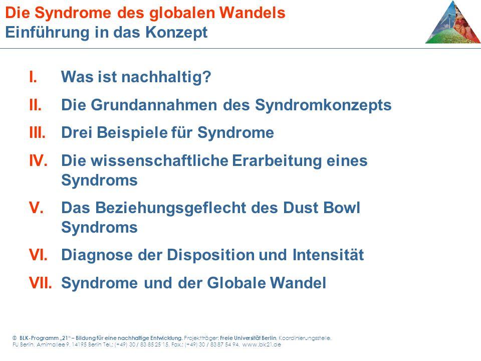 Die Syndrome des globalen Wandels Einführung in das Konzept I.Was ist nachhaltig? II.Die Grundannahmen des Syndromkonzepts III.Drei Beispiele für Synd