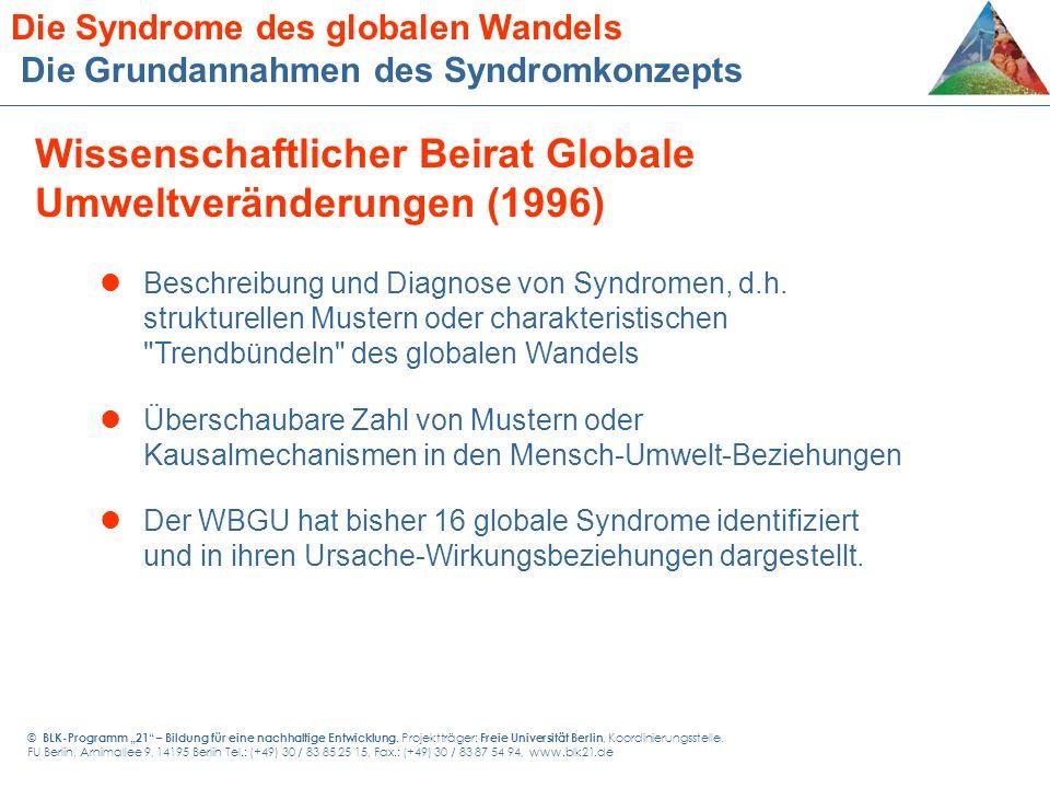 Beschreibung und Diagnose von Syndromen, d.h. strukturellen Mustern oder charakteristischen