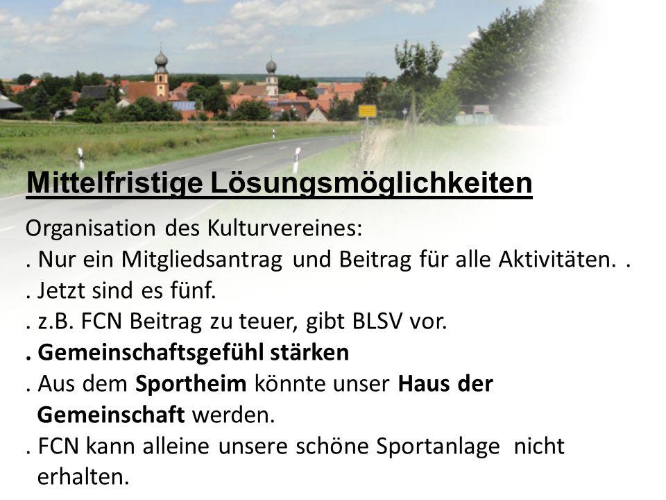 Mittelfristige Lösungsmöglichkeiten Organisation des Kulturvereines:.