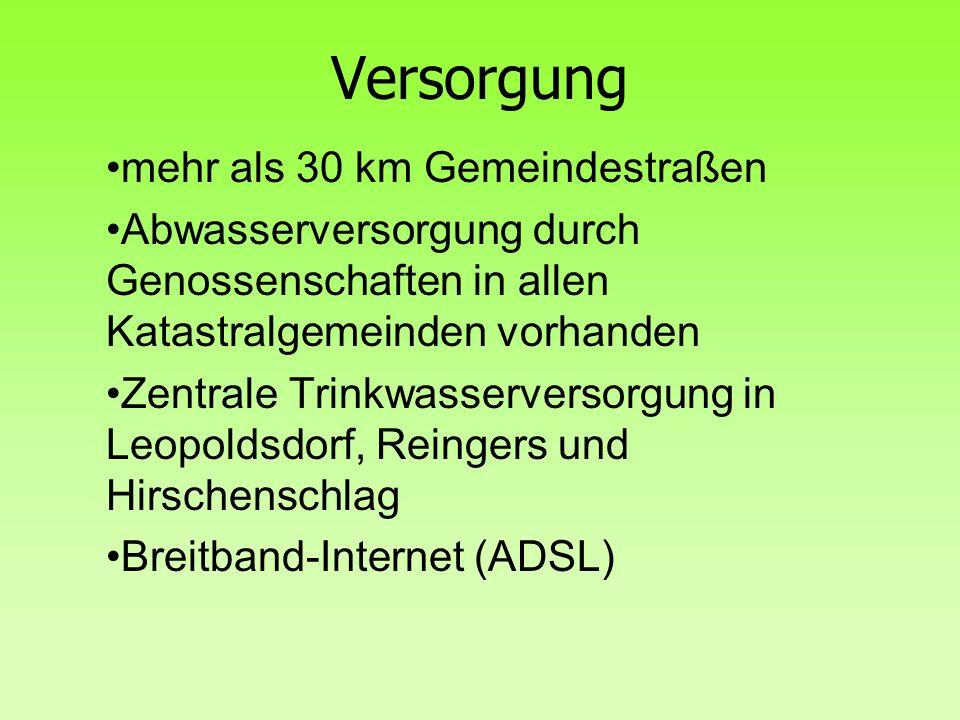 Versorgung mehr als 30 km Gemeindestraßen Abwasserversorgung durch Genossenschaften in allen Katastralgemeinden vorhanden Zentrale Trinkwasserversorgung in Leopoldsdorf, Reingers und Hirschenschlag Breitband-Internet (ADSL)
