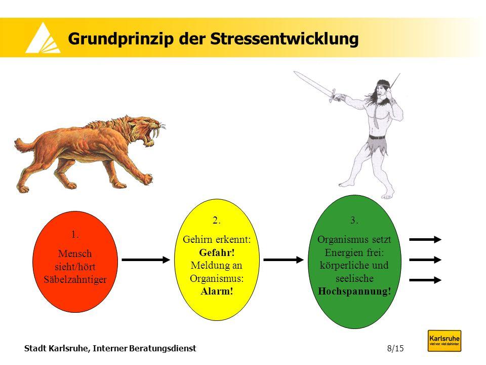 Stadt Karlsruhe, Interner Beratungsdienst8/15 Grundprinzip der Stressentwicklung 1. Mensch sieht/hört Säbelzahntiger 2. Gehirn erkennt: Gefahr! Meldun
