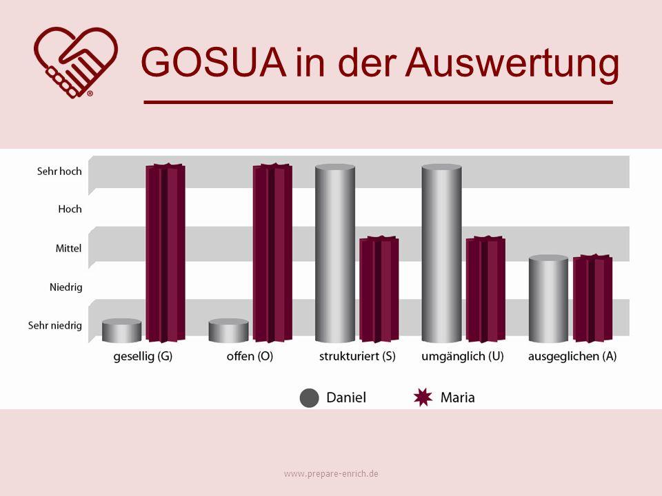 GOSUA in der Auswertung www.prepare-enrich.de