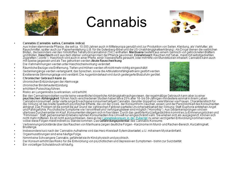 Cannabis Cannabis (Cannabis sativa, Cannabis indica) Aus Indien stammende Pflanze, die seit ca.