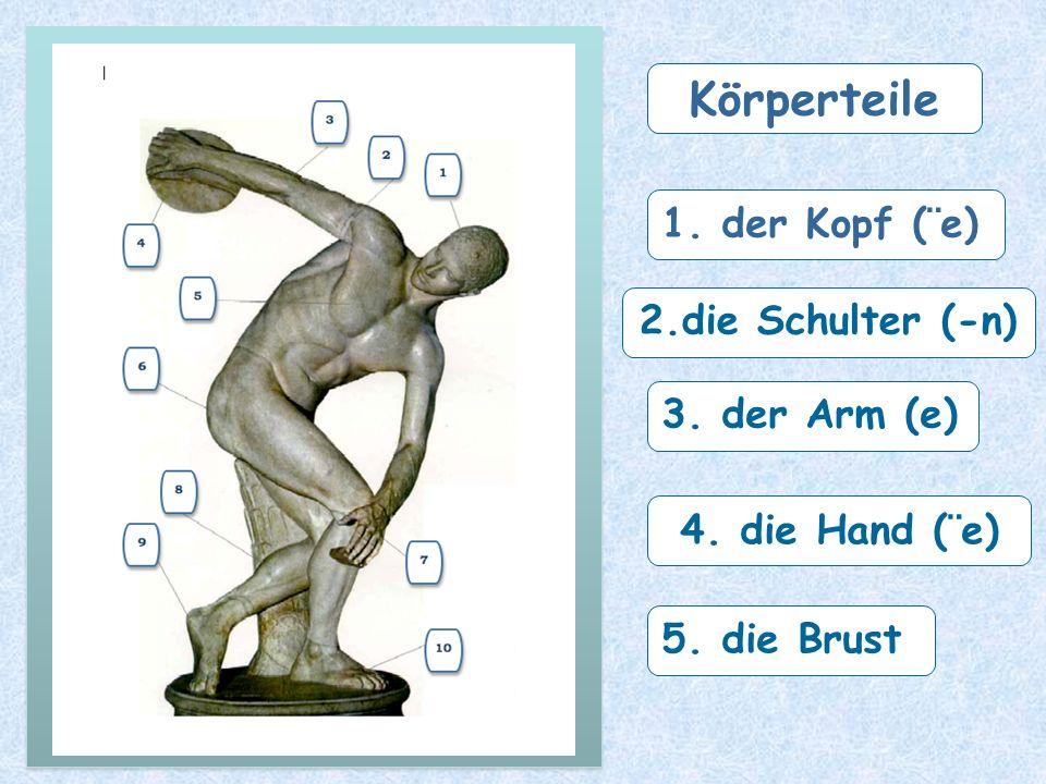 2.die Schulter (-n) 3. der Arm (e) 4. die Hand (¨e) 5. die Brust Körperteile 1. der Kopf (¨e)