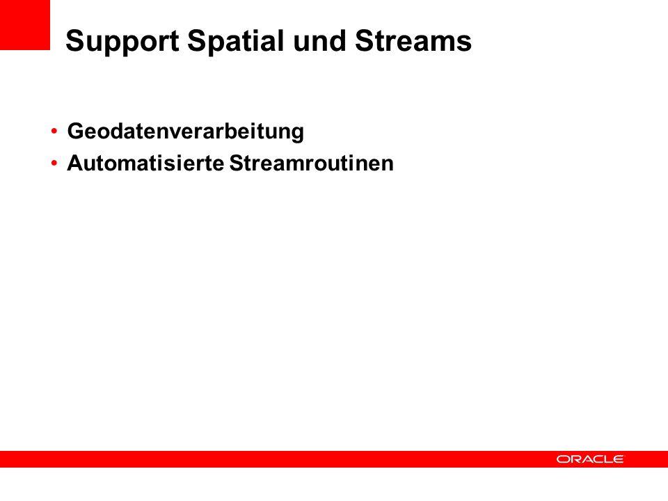 Support Spatial und Streams Geodatenverarbeitung Automatisierte Streamroutinen