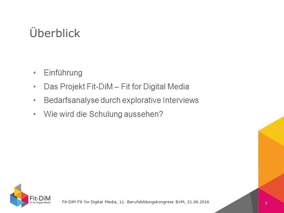 Fit-DiM Farben RGB Schrift: Verdana 225 11 105 74 132 196 80 80 80 130 130 130 Überblick Fit-DiM Fit for Digital Media, 11.