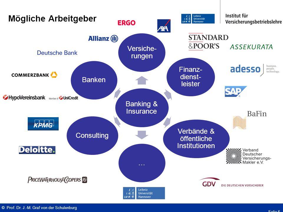Banking & Insurance Versiche- rungen Finanz- dienst- leister Verbände & öffentliche Institutionen …ConsultingBanken Mögliche Arbeitgeber © Prof.