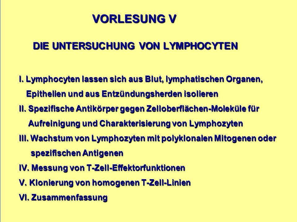 VORLESUNG V DIE UNTERSUCHUNG VON LYMPHOCYTEN I. Lymphocyten lassen sich aus Blut, lymphatischen Organen, Epithelien und aus Entzündungsherden isoliere