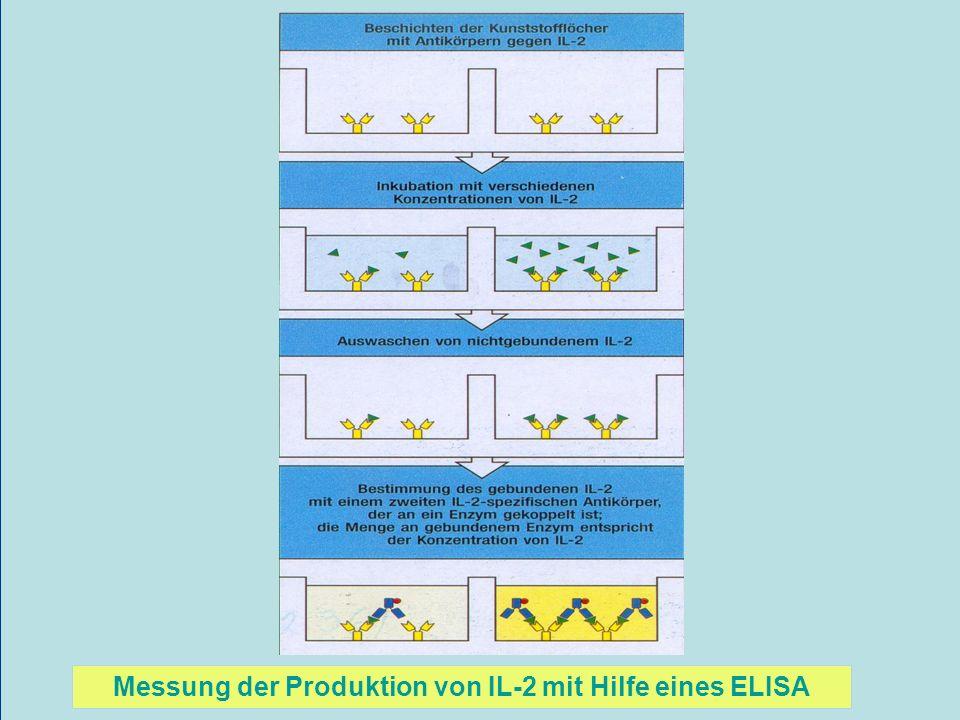 Messung der Produktion von IL-2 mit Hilfe eines ELISA