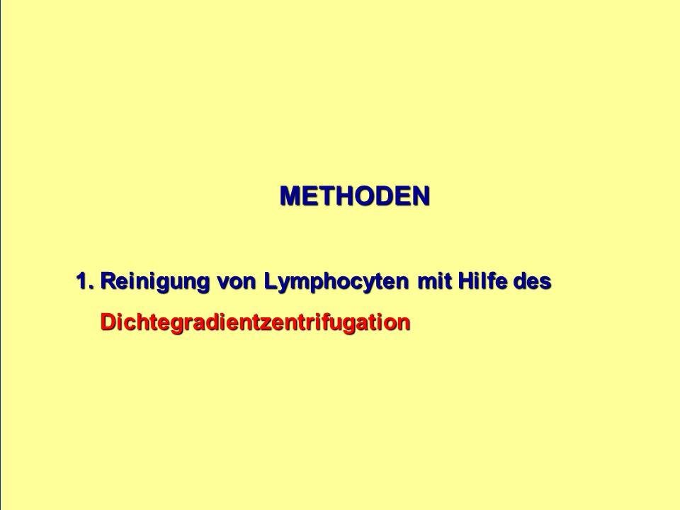 METHODEN 1. Reinigung von Lymphocyten mit Hilfe des Dichtegradientzentrifugation METHODEN 1. Reinigung von Lymphocyten mit Hilfe des Dichtegradientzen