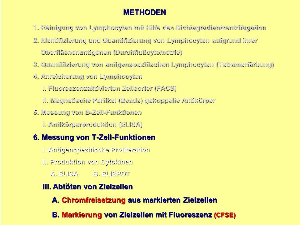 METHODEN 1. Reinigung von Lymphocyten mit Hilfe des Dichtegradientzentrifugation 2.