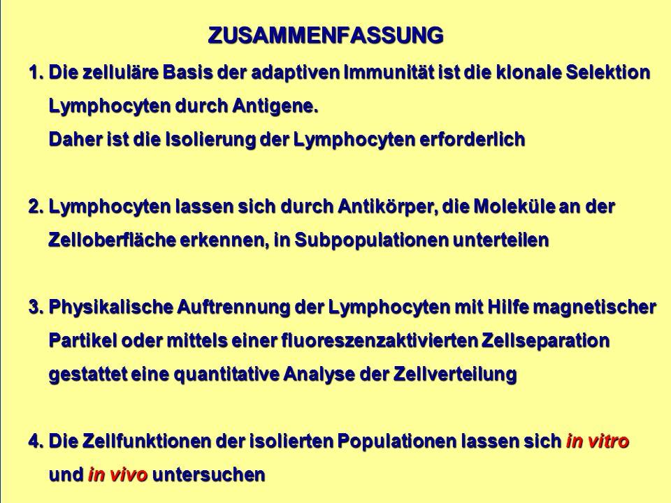 ZUSAMMENFASSUNG 1.