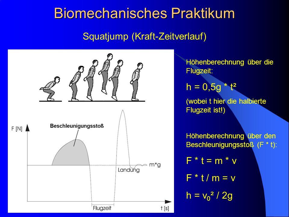 Squatjump (Kraft-Zeitverlauf) Biomechanisches Praktikum Höhenberechnung über die Flugzeit: h = 0,5g * t² (wobei t hier die halbierte Flugzeit ist!) Höhenberechnung über den Beschleunigungsstoß (F * t): F * t = m * v F * t / m = v h = v 0 ² / 2g