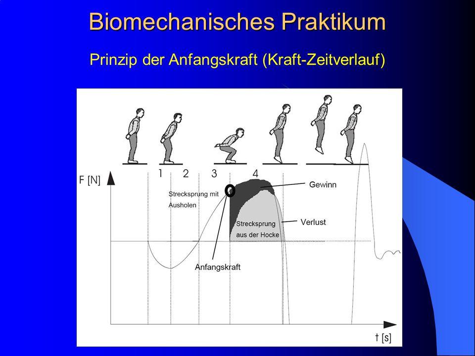 Prinzip der Anfangskraft (Kraft-Zeitverlauf) Biomechanisches Praktikum