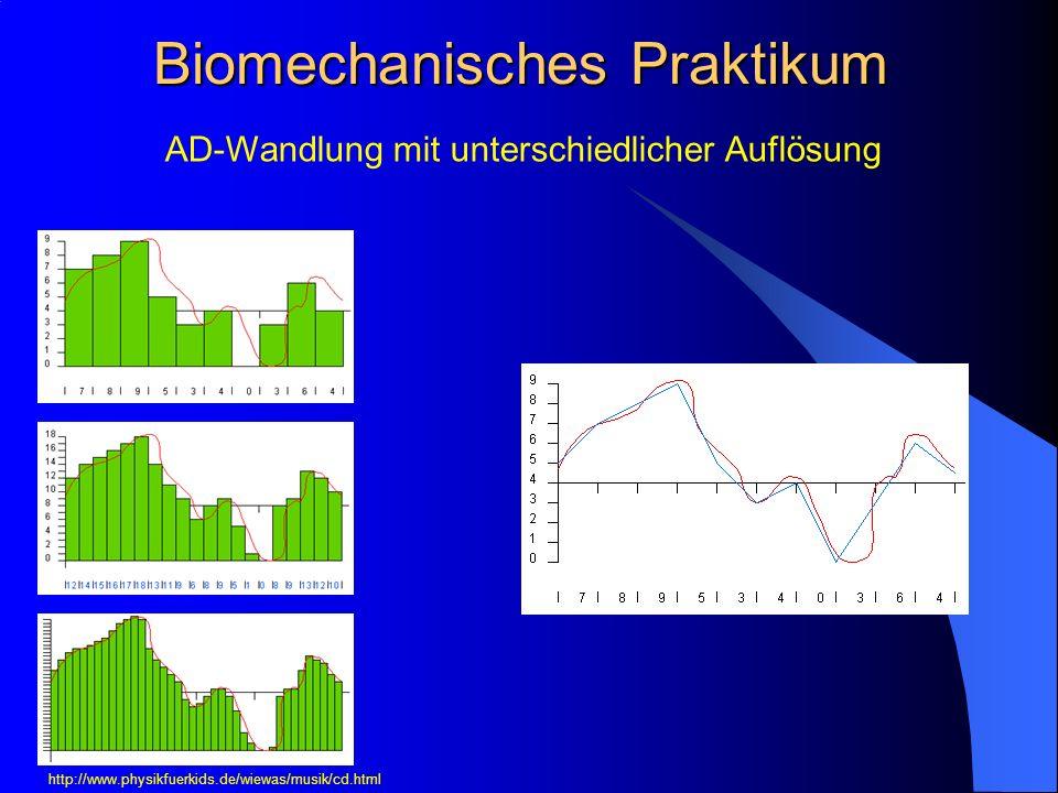 Biomechanisches Praktikum AD-Wandlung mit unterschiedlicher Auflösung http://www.physikfuerkids.de/wiewas/musik/cd.html