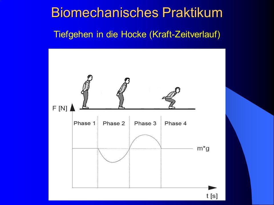 Tiefgehen in die Hocke (Kraft-Zeitverlauf) Biomechanisches Praktikum