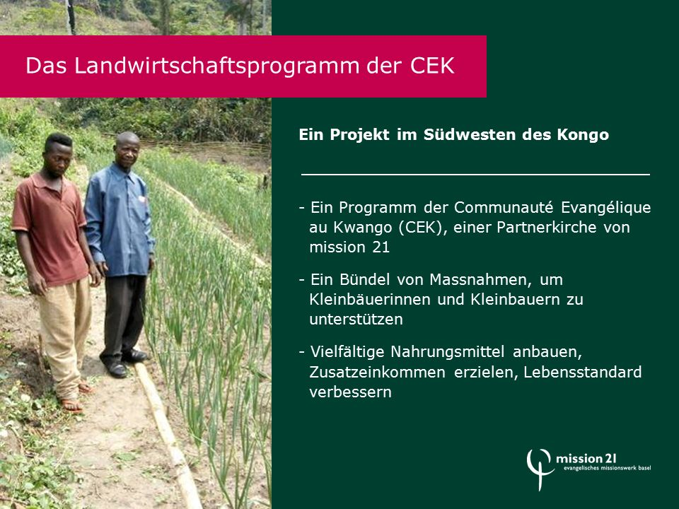 Ein Projekt im Südwesten des Kongo - Ein Programm der Communauté Evangélique au Kwango (CEK), einer Partnerkirche von mission 21 - Ein Bündel von Massnahmen, um Kleinbäuerinnen und Kleinbauern zu unterstützen - Vielfältige Nahrungsmittel anbauen, Zusatzeinkommen erzielen, Lebensstandard verbessern Das Landwirtschaftsprogramm der CEK