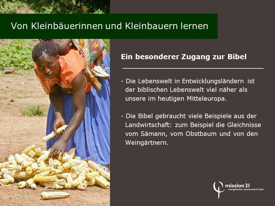 Ein besonderer Zugang zur Bibel - Die Lebenswelt in Entwicklungsländern ist der biblischen Lebenswelt viel näher als unsere im heutigen Mitteleuropa.