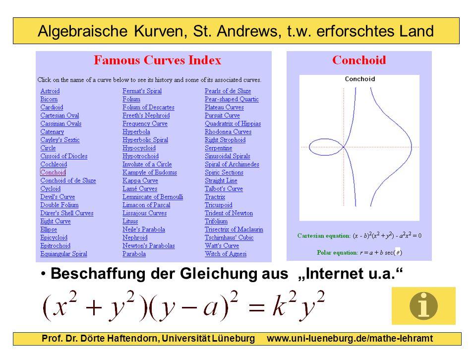Algebraische Kurven, St. Andrews, t.w. erforschtes Land Prof.